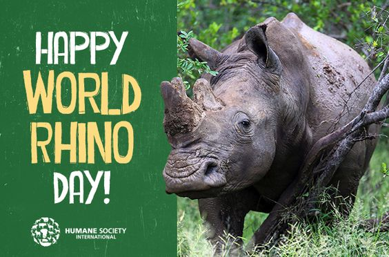 World Rhino Day - Sept22: