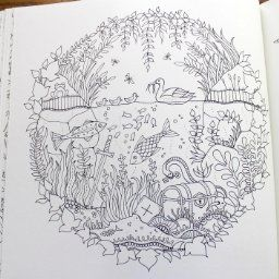 Enchanted Forest An Inky Quest Coloring Book Johanna Basford 9781780674889 Amazon