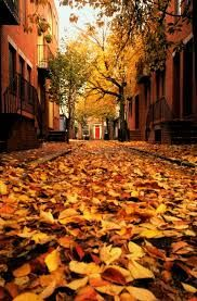 paisajes de otoño tumblr - Buscar con Google