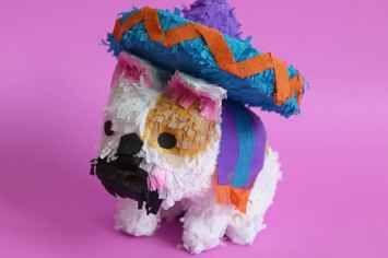Ahora ya puedes inmortalizar a tu mascota como la piñata más adorable