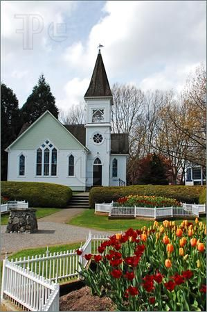 Lovely white wooden church with a beautiful tulip garden