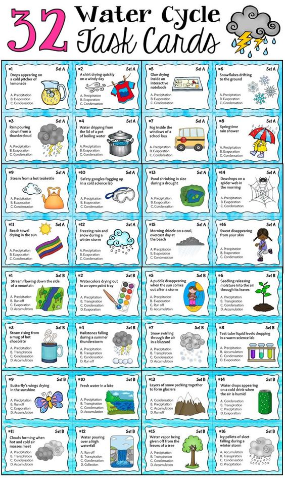 Parts of the Water Cycle Task Cards includes a total of 32