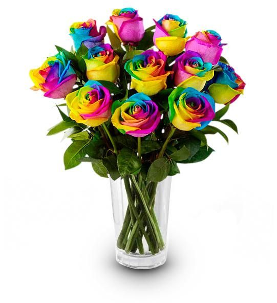Image result for rainbow roses