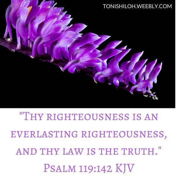 Psalm 119:142 KJV