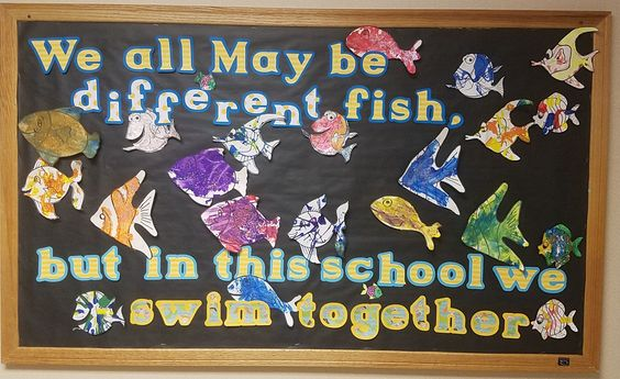 School of Fish Bulletin Board