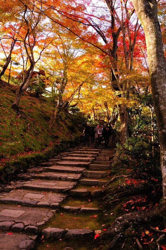 関西2013#1685 ソース:yoshiki120%さん