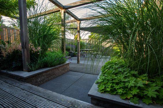 De pergola in deze moderne tuin is mooi en ook nog functioneel d.m.v. een schommel voor de kinderen.