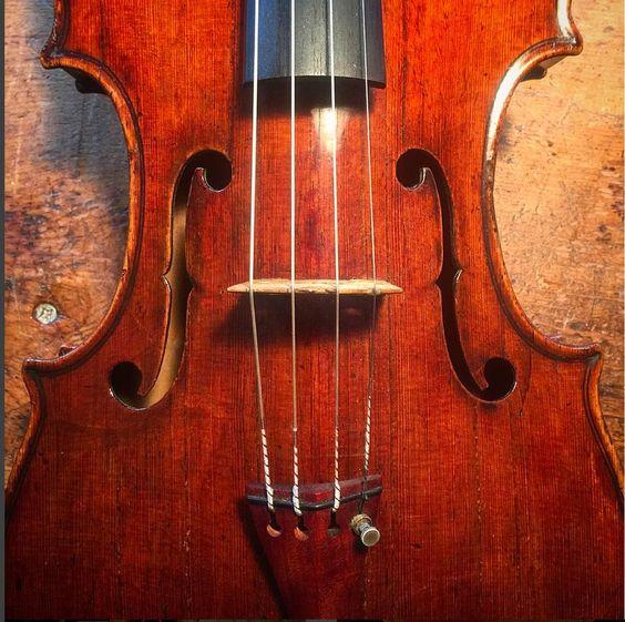gasparo da salo viola those eyes viola salo italian violin cello lovemyjob violist. Black Bedroom Furniture Sets. Home Design Ideas