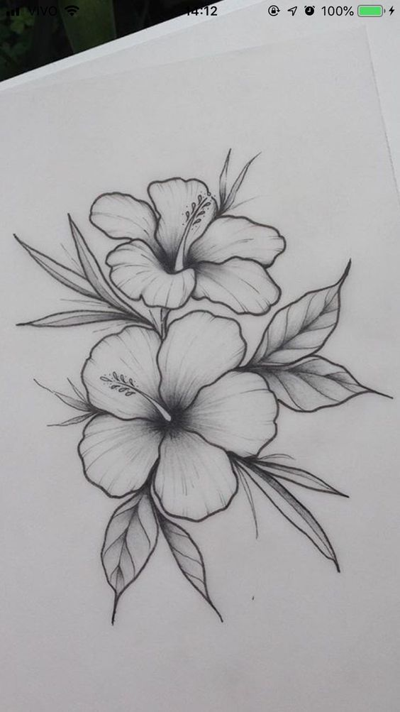 Hibiscus Flower A3 A4 A5 Illustration Drawing Floral Print Wall Decoration In 2020 Pencil Drawings Of Flowers Easy Flower Drawings Art Drawings Simple