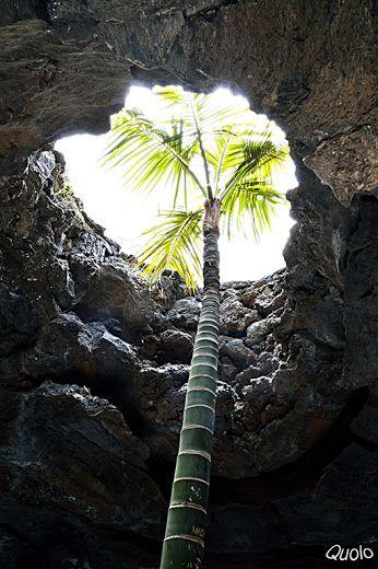 Google+Buscando la luz desde dentro de una burbuja volcánica. Casa de Cesar Manrique - Lanzarote / Canarias.