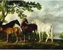 Mares and Foals by a River landscape Rug by George Stubbs