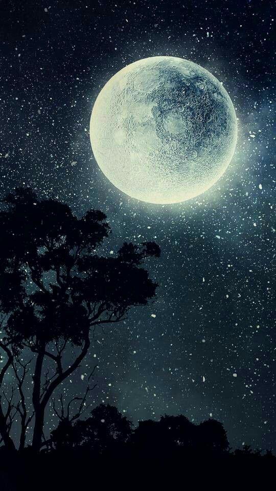 Nature Beauty Beautyfull Scense Stars Moon Tree Colourfull Sky Moon Painting Moon Art Moon Photography