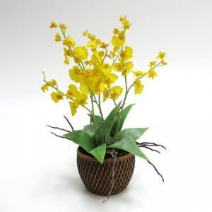 As flores: 90 artigos   Casa umComo
