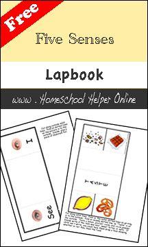 Free Five Senses Lapbook - Homeschool Helper Online
