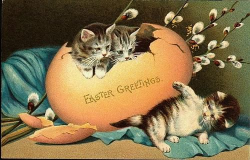 Easter Fabric Block Vintage Postcard Kitty Cat Greeting: