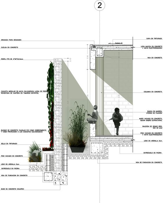 Wall section with plants and shadows concept for Architectural detail drawings