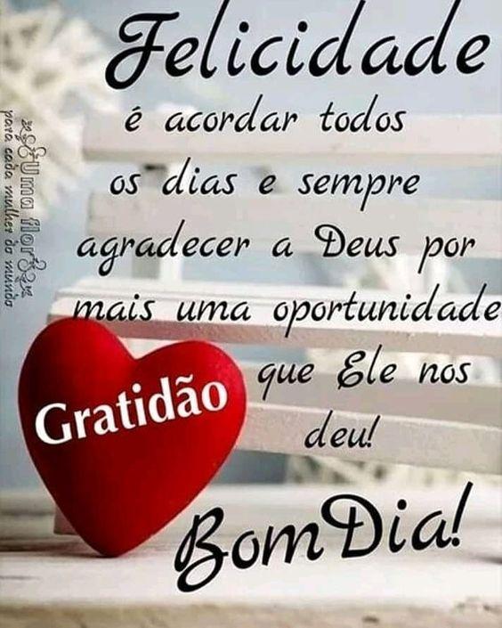 Todo dia é dia de Agradecer e ser Feliz na presença do Senhor