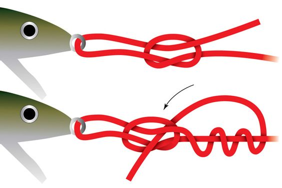 Loop knots give you a good alternative for topwater baits that don't have split rings. You can allow the bait to move side to side more with a loop knot and lets baits walk that don't ordinarily walk well. The Rapala Knot is a fairly popular loop knot for bigger lures and you can manage ...