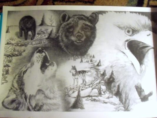 WILDLIFE Pencil Drawing