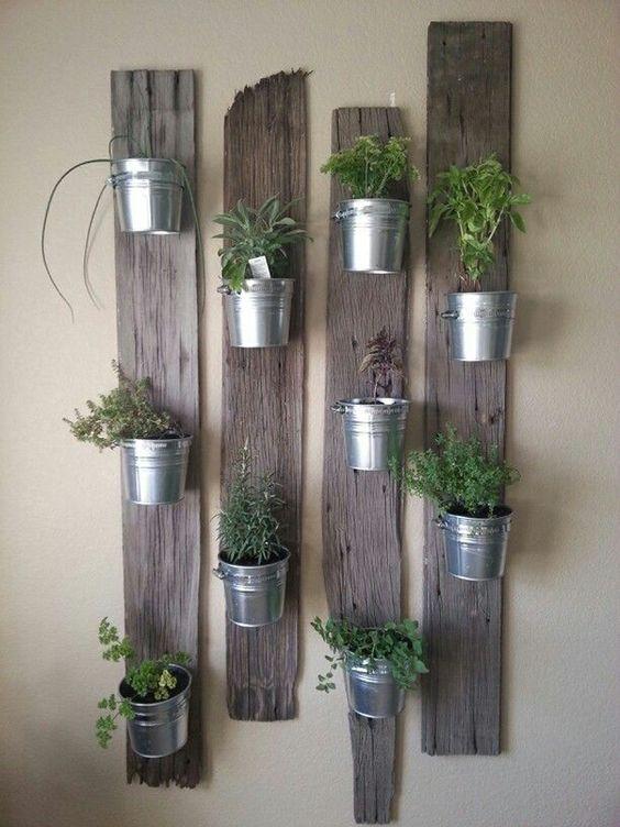 herbes aromatiques en jardinière d'intérieur
