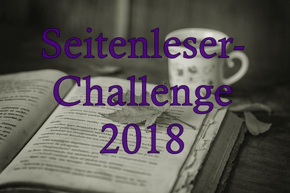 Seitenleser Challenge