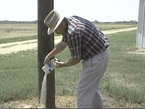 """Grits are not an effective control for fire ants. On a bait label you may see """"Contains yellow grit"""" but this does not mean grits will eradicate a mound.   http://www.extension.org/pages/34804/do-grits-kill-fire-ants#.UnPOARbilBA"""