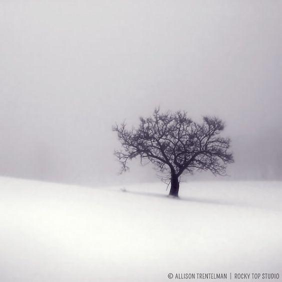 SALE 50 OFF  Minimalist Winter Print White by RockyTopPrintShop, $7.50