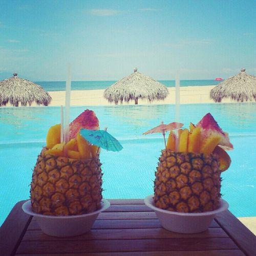 Hello Paradise.
