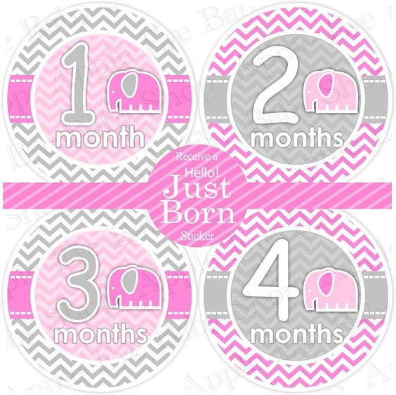 13 Monthly Onesie Stickers FREE Hello Just Born Sticker- PINK ELEPHANT (chevron pattern.gray.light pink.hot pink). $9.00, via Etsy.