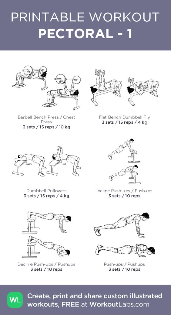PECTORAL - 1– my custom exercise plan created at WorkoutLabs.com • Click…