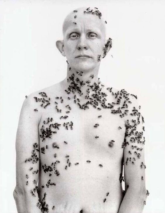 Ronald Fischer, Beekeeper by Richard Avedon, 1981. —  https://www.facebook.com/pages/ARTE-Maestre/186806941462121?ref=hl