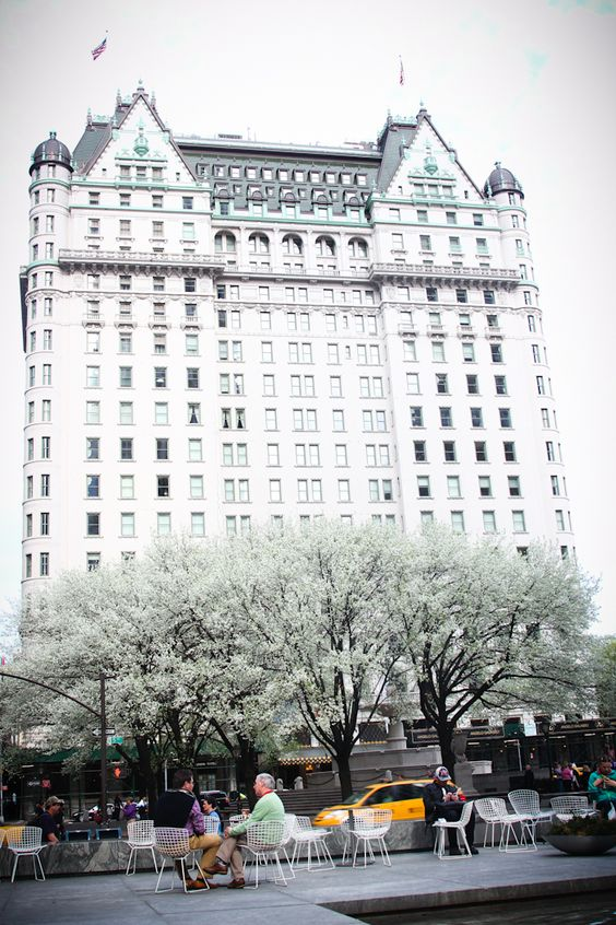 The Plaza Hotel, Fifth Avenue