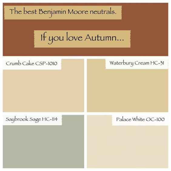 Interior and home exterior paint color ideas paint for Best neutral yellow paint colors