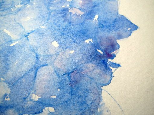 Step By Step Watercolor How To Paint A Blue Hydrangea Hydrangea