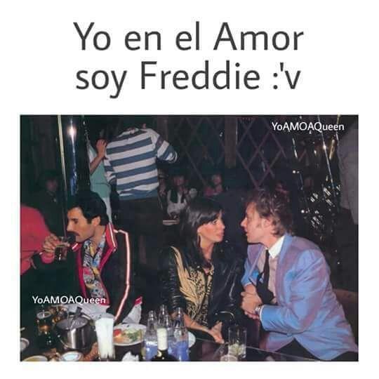 Pin En Freddie