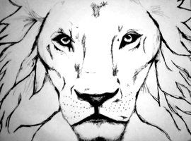 how to draw a fierce lion