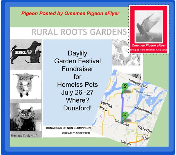 July 26-27 Dunsford #Ontario #Gardens Go To Dogs, Cats, Hamsters, Rabbits...! Daylily Festival Fundraiser