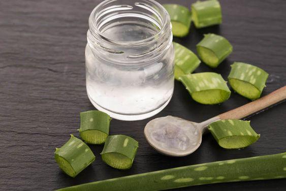 Aloe Vera Gel Recipe
