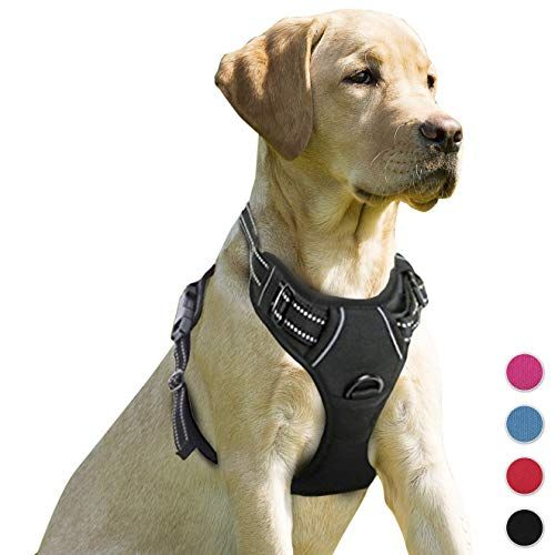 Barkbay No Pull Dog Harness Front Clip Heavy Duty Reflective Easy