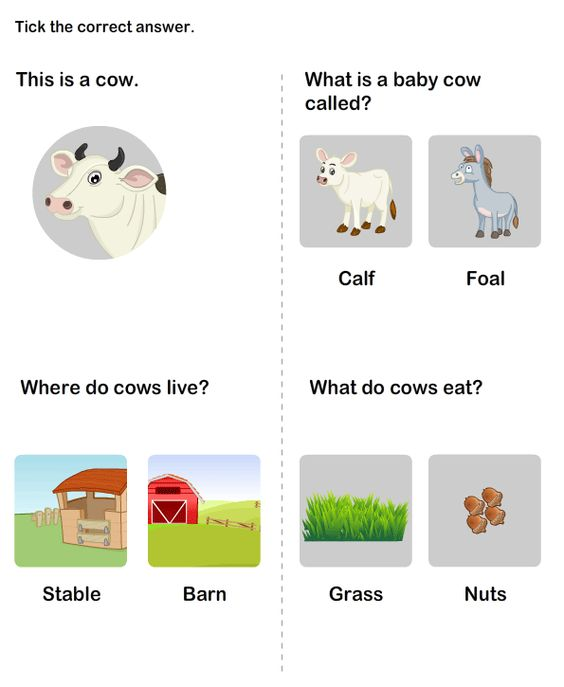 Farm Animals Worksheets Learn about Farm Animals Domestic – Farm Animals Worksheets for Kindergarten
