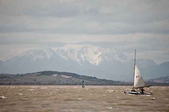 Wussten Sie, dass der #Neusiedlersee einer der wenigen Steppenseen in Europa ist? Er zeichnet sich durch seine geringe Tiefe und sein mildes und windiges Klima aus - perfekt zum #Segeln!
