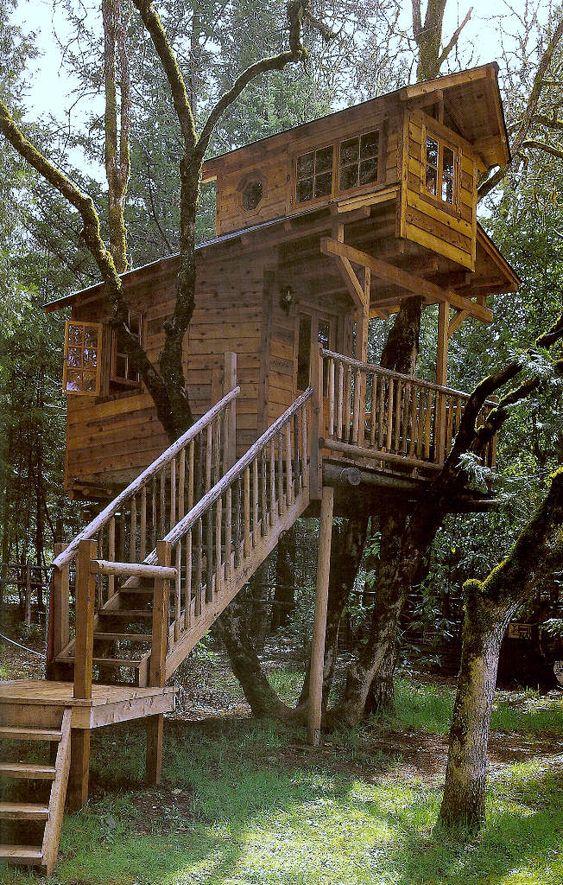 Maravillosas casas en los árboles !!!