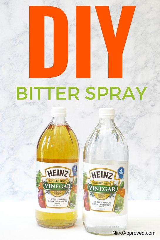 Apple Cider Apple Cider Vinegar And Puppy Find On Pinterest