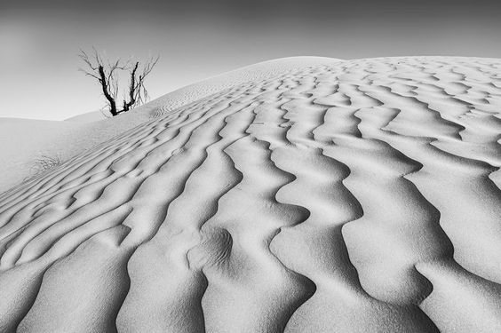 Ripples and shadows by Stefan Cruysberghs on 500px (Tunisia)