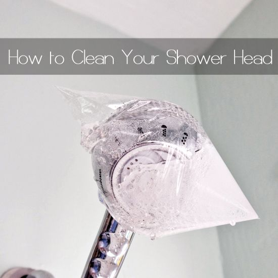 Clean Your Showerhead In Minutes The Head Sodas And Band