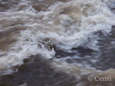 Centi bastelt: Wieder Wasser