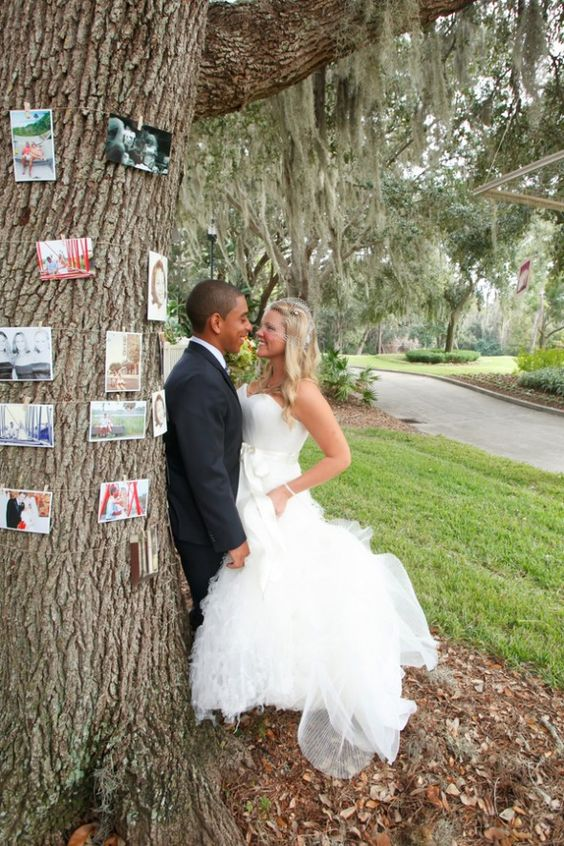 Pictures Hanging From Trees At Wedding