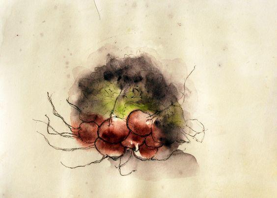 Rabanitos. Aguada sobre papel. Yolanda Ybañez 2012