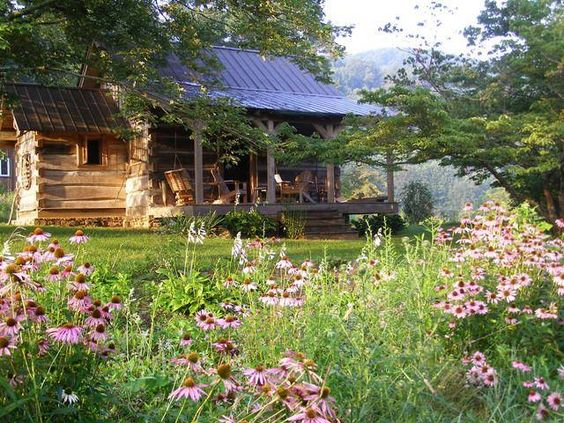 Little brown cabin