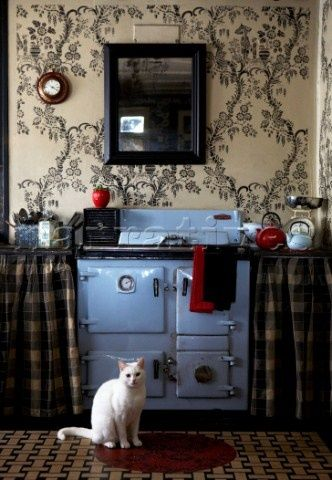 Curtains Ideas cat curtains kitchen : Old fashioned kitchen with blue antique oven, cabinet curtains ...